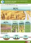 Infografía: Distribución del agua a las explotaciones agrícolas