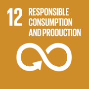 Goal 12. Ensure sustainable consumption and production patterns
