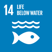 Goal 13. Conserve and sustainably use the oceans, seas and marine resources for sustainable development