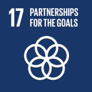 Goal 17. Strengthen the means of implementation and revitalize the global partnership for sustainable development